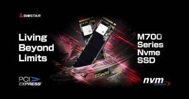 Biostar M700 Series SSD PCIe Gen3 M.2 2280 NVMe 1.3
